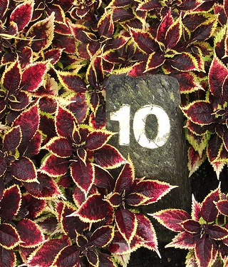 Number 10 (CC BY-SA 2.0) by Lee Haywood