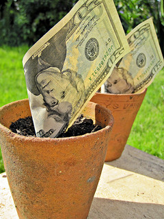Growing your investments (CC by 2.0) by Images of Money