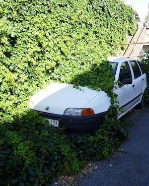 Foliage buries car (CC BY-SA 2.0) by Thomas Quine